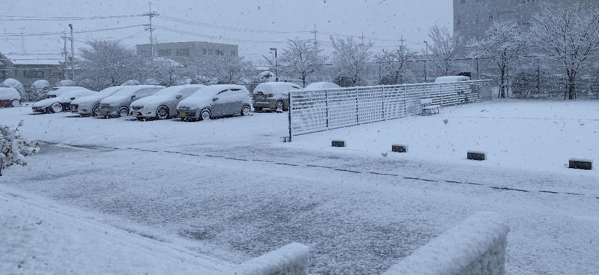 滋賀は、雪!